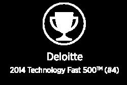 award-pw-deloitte-500-new-white
